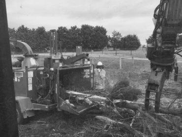 Wood chipping & mulch
